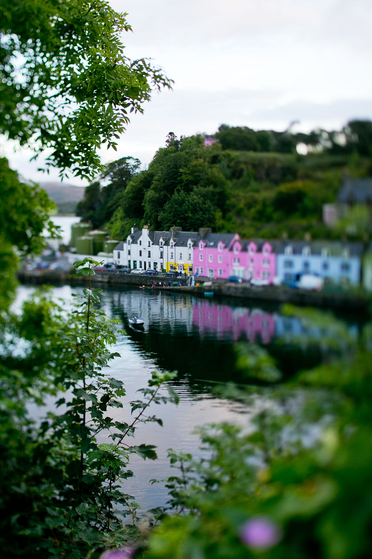 Portree Harbour and Pier Beauty In Nature Day Floating On Water Flower Harbour Idyllic Lake Nature Nautical Vessel No People Outdoors Pedal Boat Pier Portree Reflection Sky Travel Destinations Tree Water