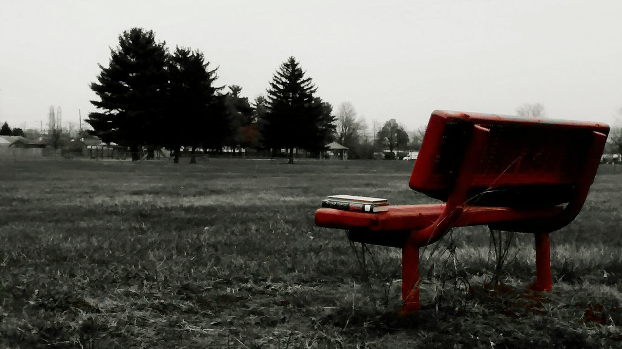 tree, empty, landscape, field, absence, nature, grass, chair, tranquility, park - man made space, no people, focus on foreground, clear sky, tranquil scene, day, outdoors, beauty in nature, scenics, growth, sky, animal themes, close-up