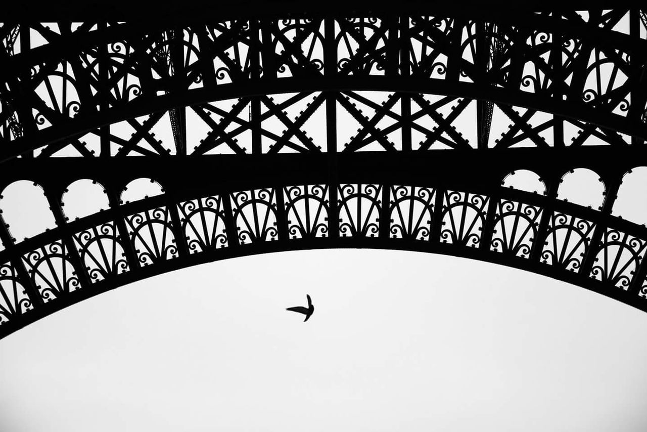 architecture, silhouette, low angle view, built structure, bridge - man made structure, outdoors, clear sky, bird, sky, day, no people