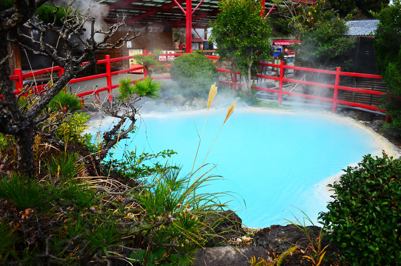 Umi Jigoku or Sea hell Beauty In Nature Day Fire Engine Firefighter Growth Hot Spring KYUSHU Motion Nature Onsen Outdoors People Real People Rescue Spraying Steam Swimming Pool Tree Water Water Park Water Slide