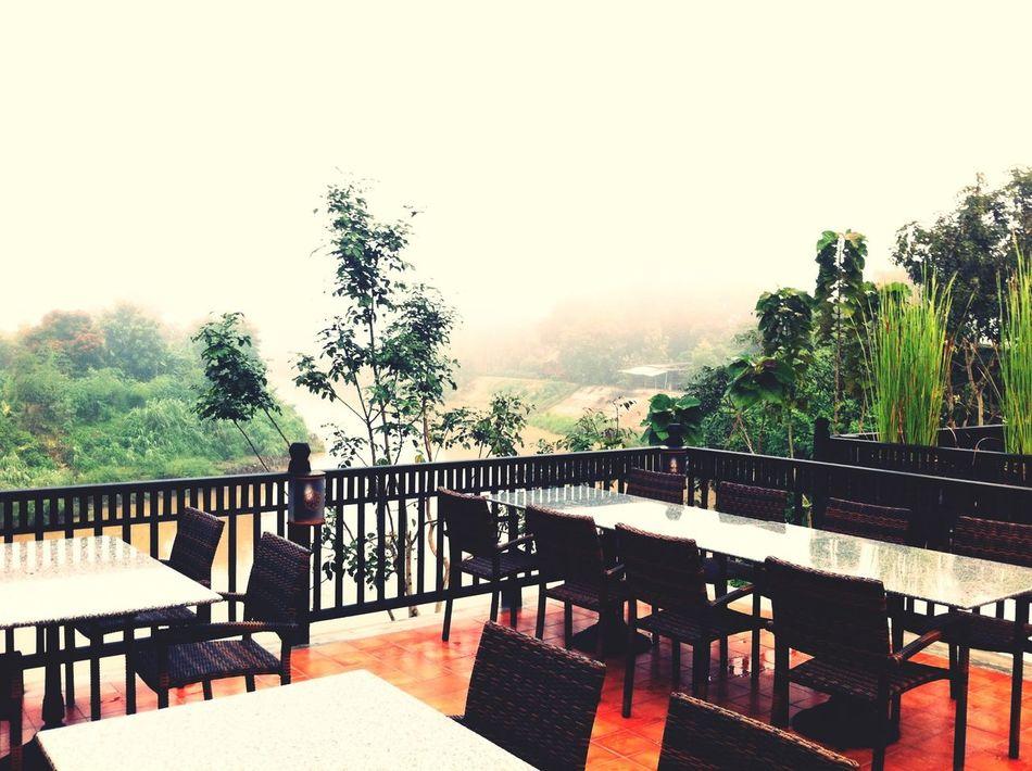 Freezing Wintertime Foggy Morning Thailand_allshots