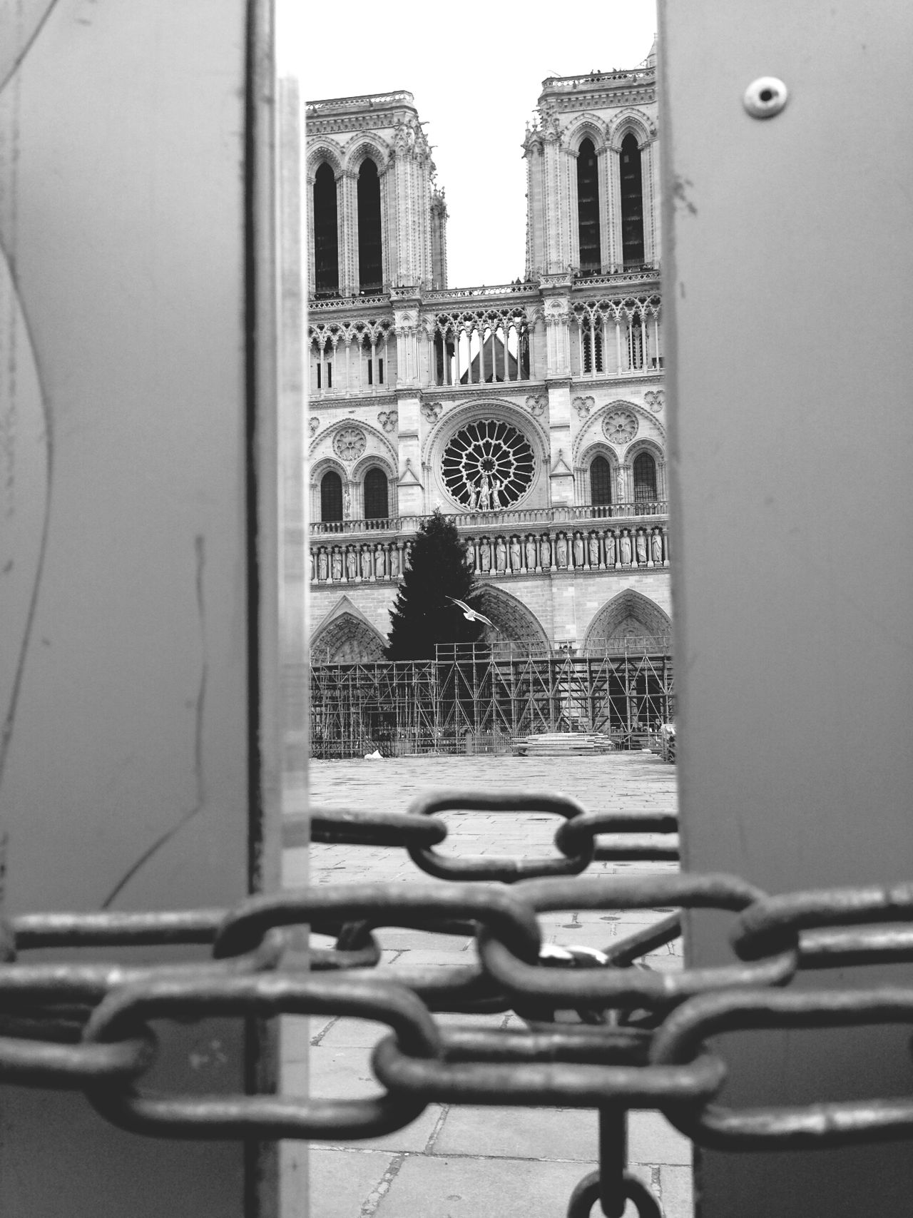 no entrance Bonjour Paris Chained Notre-Dame Black And White Photography