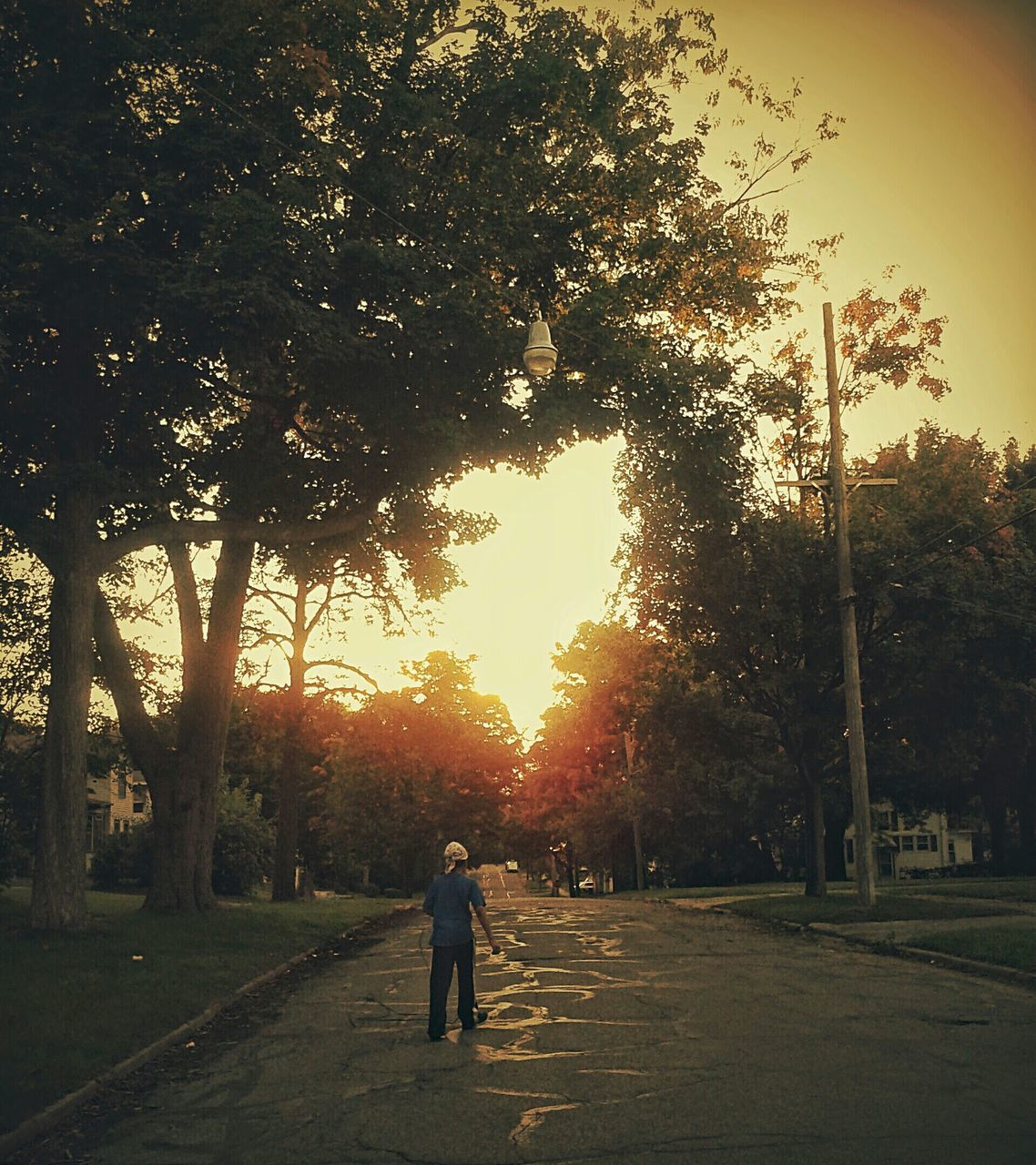 tree, sunset, walking, nature, growth, full length, outdoors, sun, silhouette, road, men, one person, real people, beauty in nature, sky, one man only, day, people