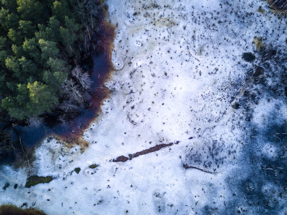 Aerial shot of swamp / marsh / lake in the forest - melting ice, dark water, trees, spring time / Dji Mavic Pro drone Aerial Shot Aerial View Beauty In Nature Beauty In Nature Dji DJI Mavic Pro Djimavicpro Drone  Dronephotography Forest Lake Landscape Marsh Mavic Mavic Pro Melting Melting Ice Nature Nature Scenic Snow Spring Swamp Tree Water