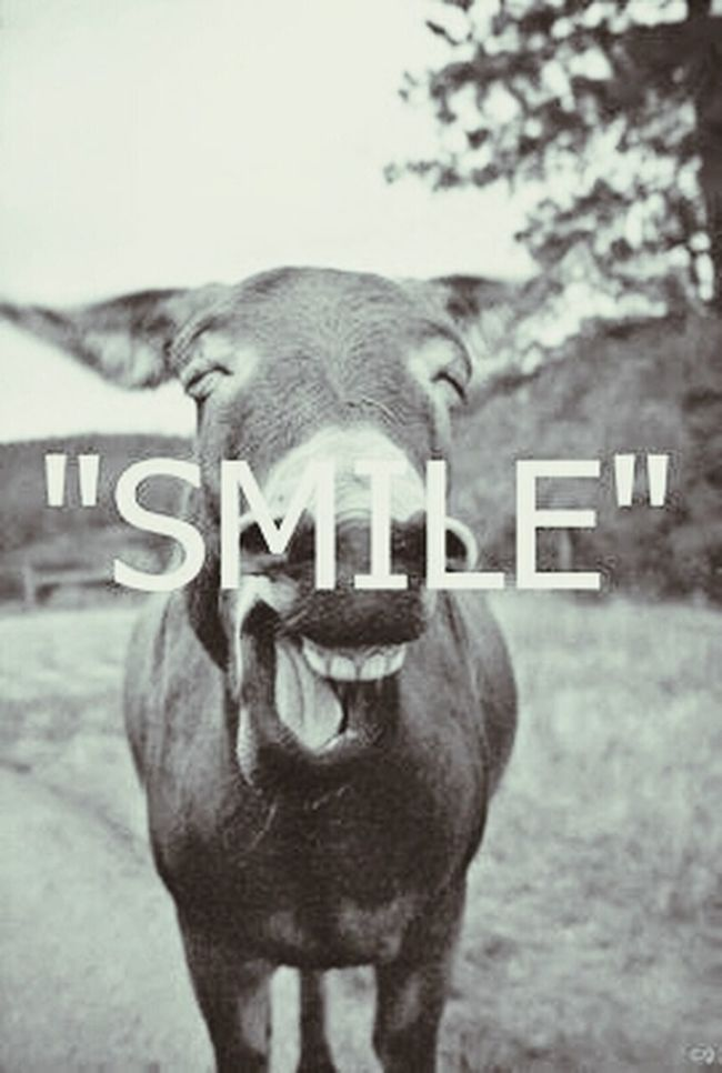 smile because it is mondayyyyy???? Happy Monday ! ☺ Smile ✌ Be Positive & Smile Always<3