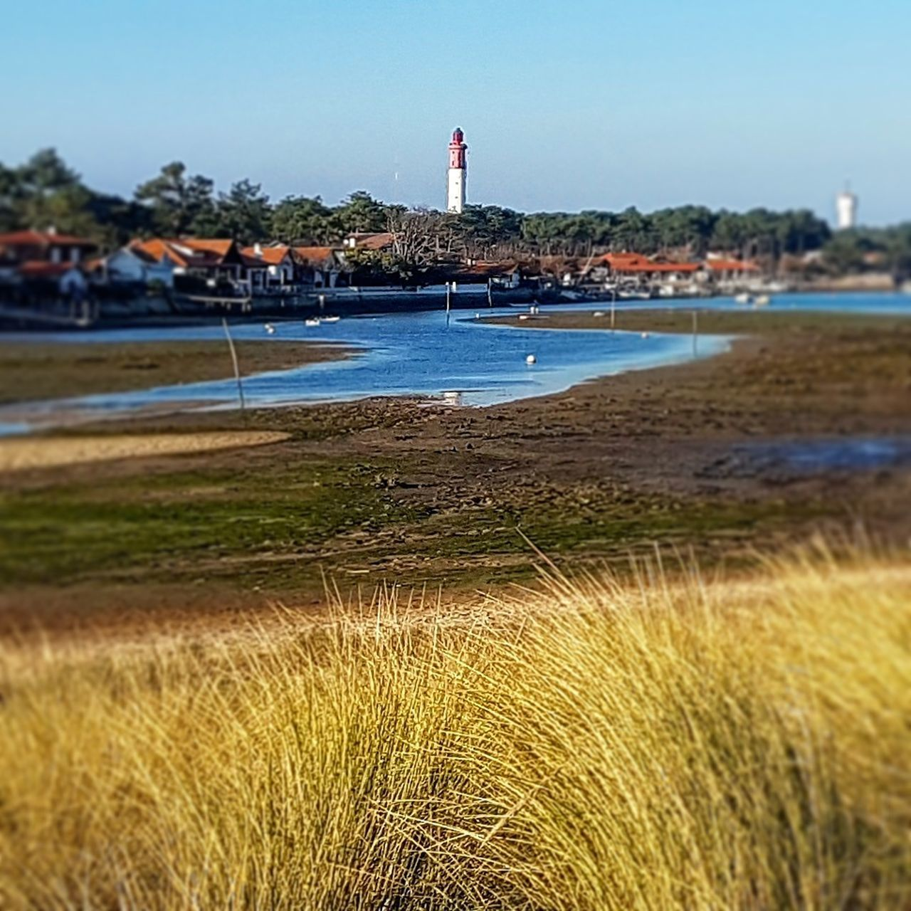 water, beach, nature, outdoors, day, flag, grass, lighthouse, clear sky, sky, sea, sand, building exterior, vacations, architecture, beauty in nature, no people, tree