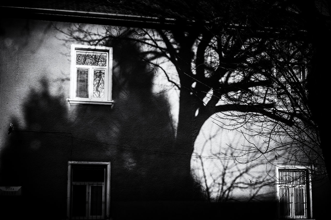 Painted on the wall Architecture Blackandwhite Built Structure Indoors  Low Angle View No People Shadows Tree