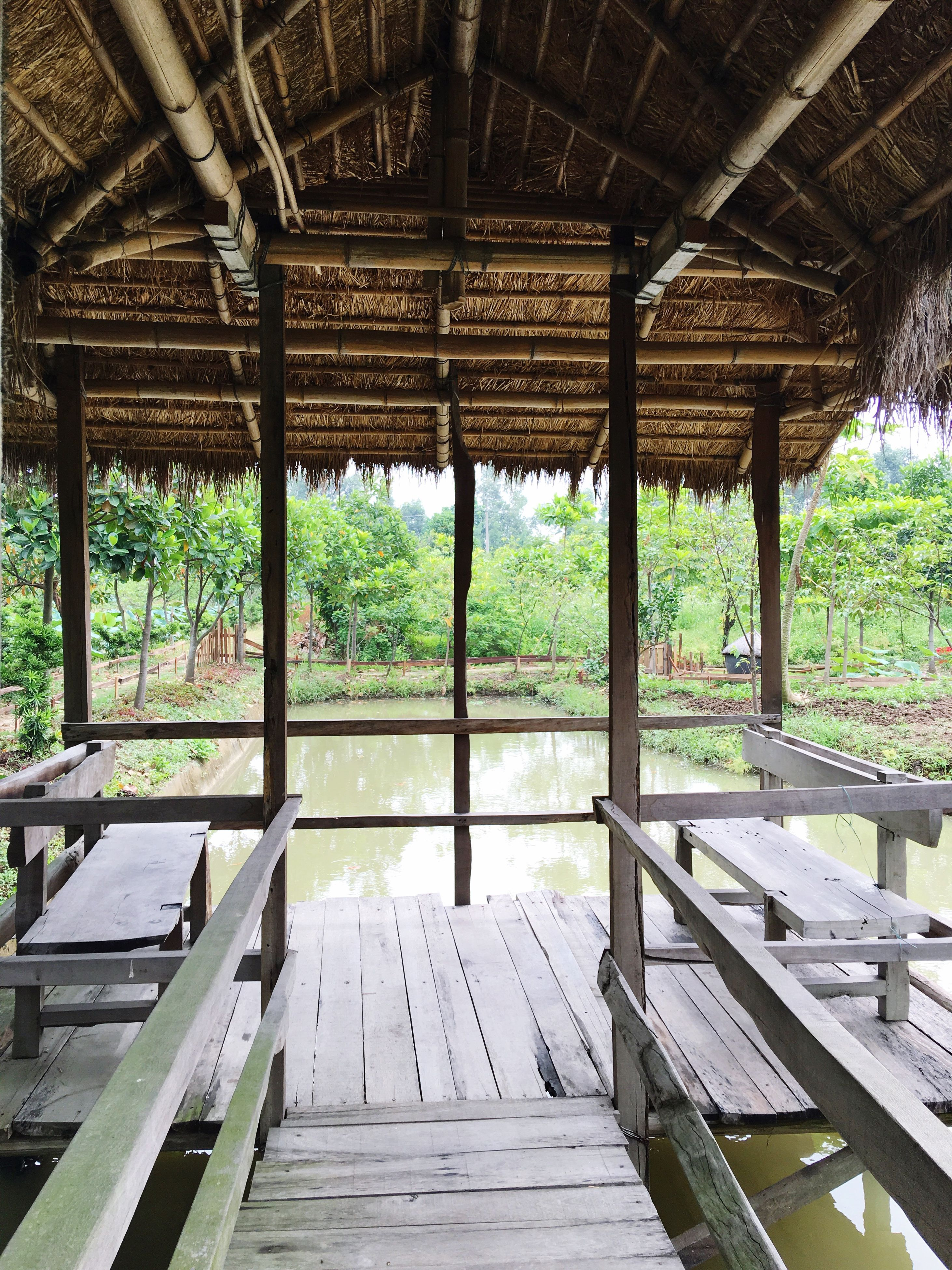 built structure, architecture, ceiling, bench, water, bridge - man made structure, pier, gazebo, tranquility, boardwalk, growth, architectural column, day, wood paneling, the way forward, no people, green color, tranquil scene, majestic