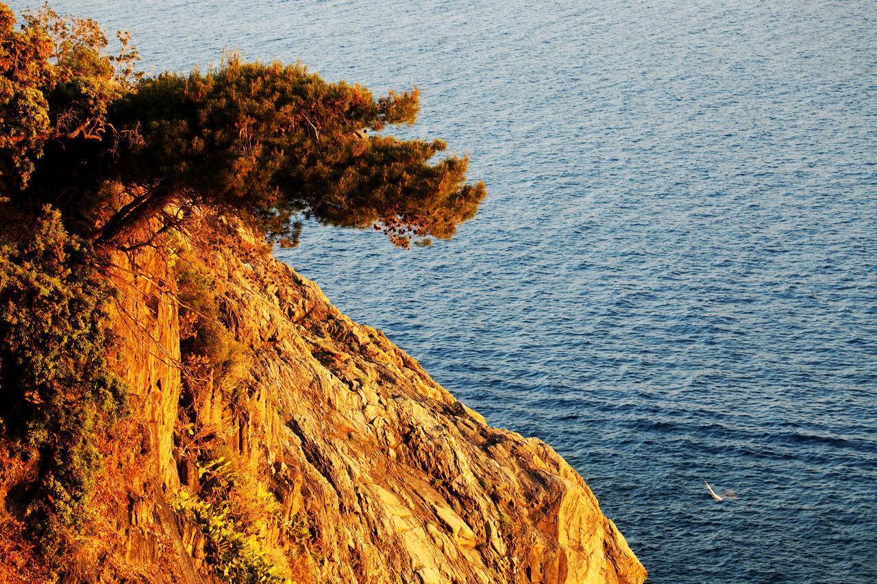 Canon Bella Italia Cinque Terre Corniglia Italian Riviera Italy Liguria Manarola Monterosso Al Mare Resort Tourism Touristic Destination Travel Travel Photography Via Del Amore