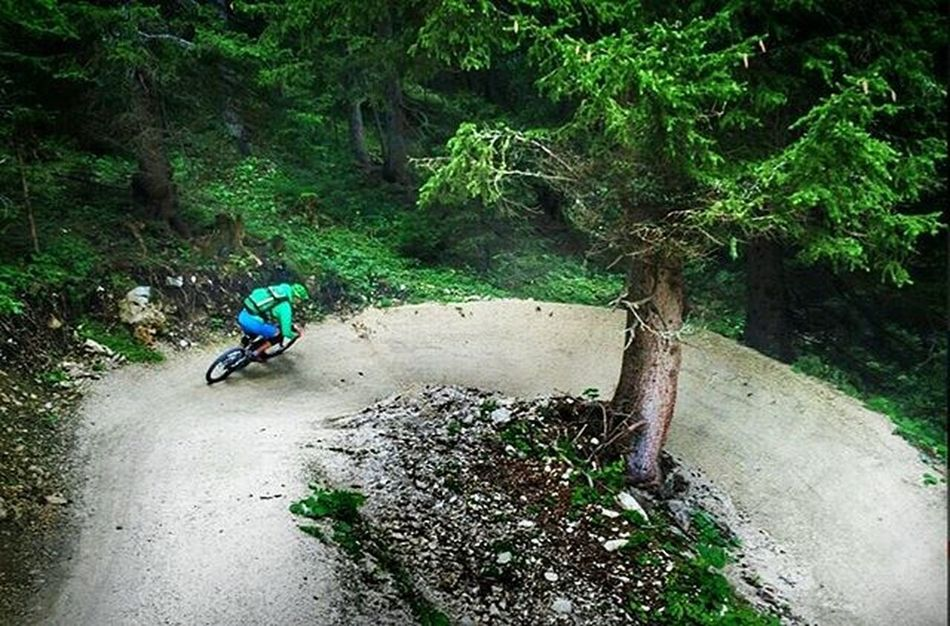 one of the greatest flowtrails in europe @petzen 🌲🌄🚴 Outdoor Trail Mountainbike Alps Allmountain Enduro Flow  Love Ytindustries Instagood Me Follow Followme Green Happy Tagsforlikes Adventure Trails Shredded Fun Friends Like4like Instadaily Fashion Igers instalikeswagamazingdiscoveraustria