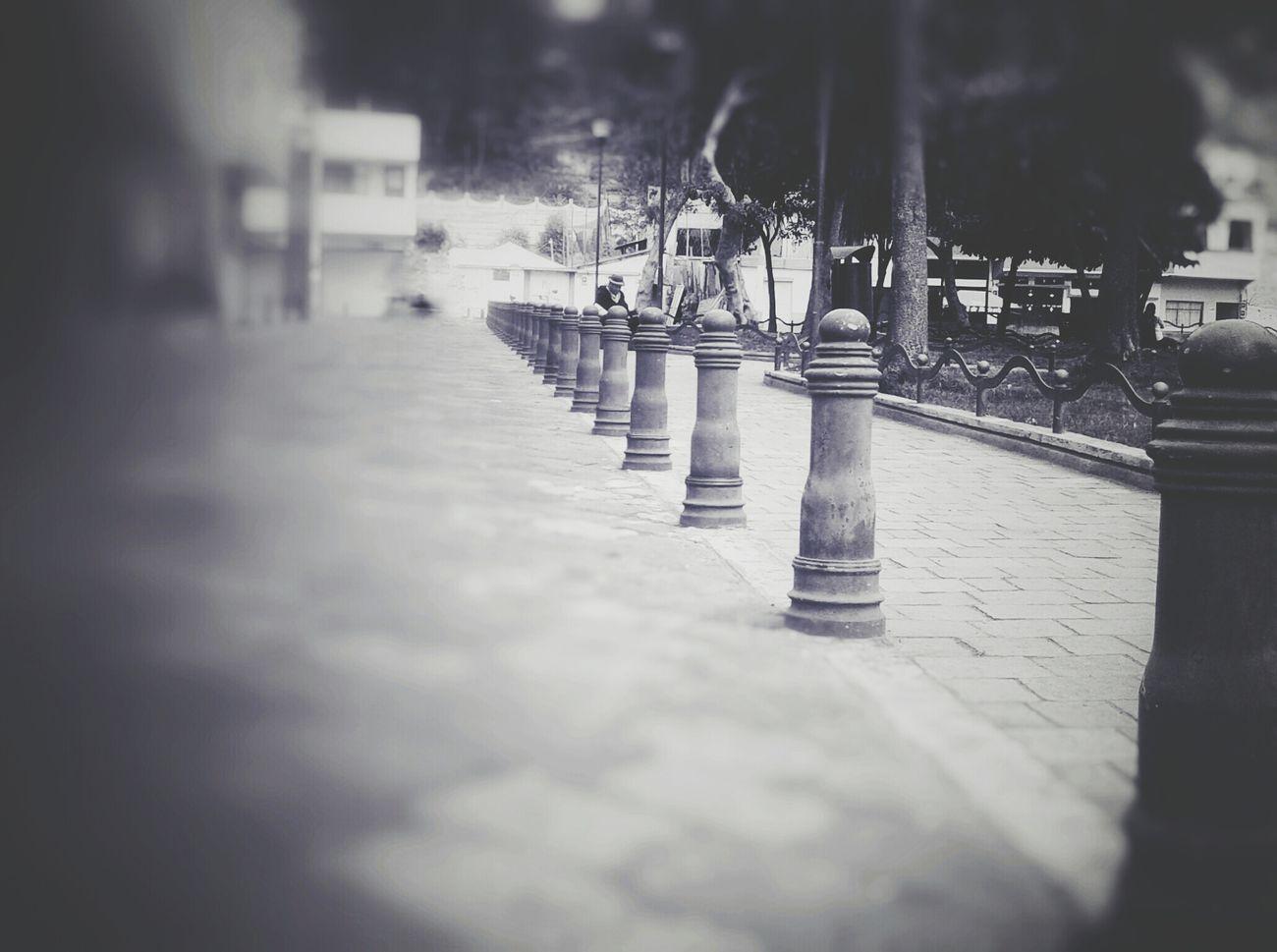 Walking Park Sidewalk Blackandwhite Blackandwhite Photography EyeEm Best Shots Photooftheday Photography Streetphotography Ambato Ecuador Enjoying Life Hello World Copyright© November