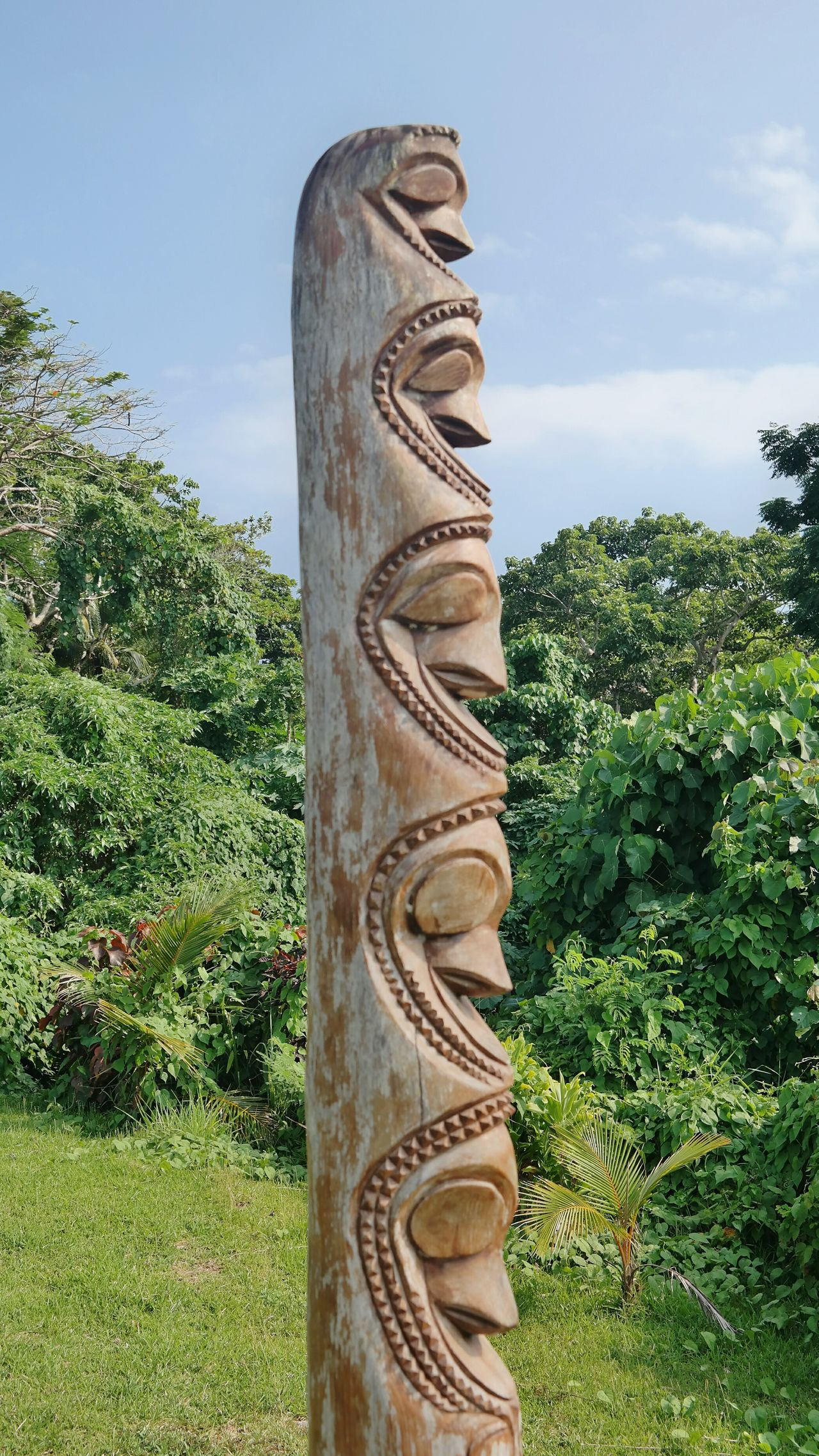 Miles Away Vanuatu Green Color Sky Tree No People Outdoors Sculpture Day Nature Extinct Südsee EyeEm Traveling
