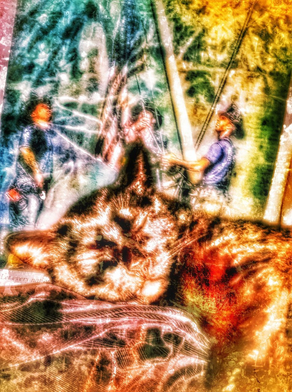 blurred motion, real people, day, outdoors, speed, leisure activity, tree, nature, grass, one person, carousel, close-up, people