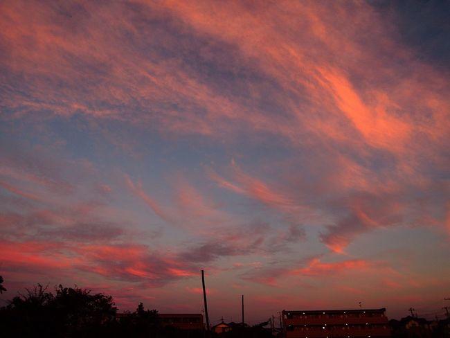 Sunset NikonP330 おつかれさま Twilight 夕暮れ時 Afterglow