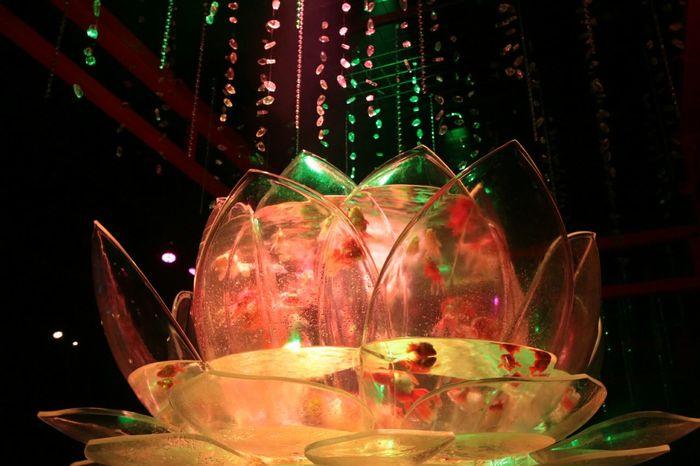 今夜の恐怖Showはこの辺で…(三脚使用禁止もまた恐怖( ; ゜Д゜)?!…(笑) Gold Fish Waterporn Art Aquarium2015 Tokyo,Japan