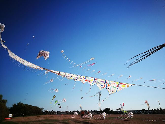 Blue Low Angle View Flying Clear Sky Sky No People Tranquil Scene Kite Sunlight Flying A Kite Kitefestival Kites In Motion Leggeri nel cielo