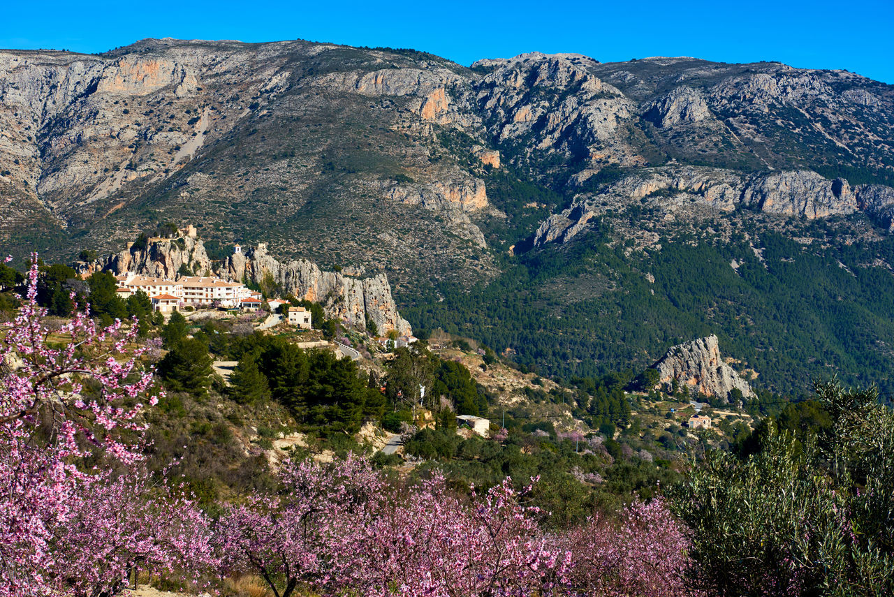Guadalest castle on a rock. Guadalest is a small village on the Costa Blanca, the most visited village in Spain Alicante Almond Tree In Blossom Ancient Architecture Beauty In Nature Castle Cliff Costa Blanca Europe Fortification Fortress Guadalest Spain Landmark Landscape Marina Baixa Mountains Nature Outdoors Picturesque Village Rock Rocky Mountains Scenery SPAIN Sunny Day Town Village
