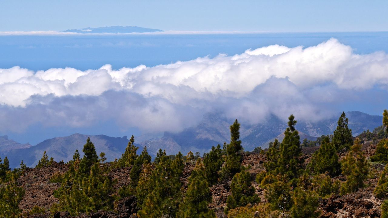Baumgrenze Beauty In Nature Cloud Cloud - Sky Idyllic La Gomera La Gomera, Canary Islands Landscape Mountain Mountain Range Nature Scenics Showcase April Sky Tenerife Teneriffa Tranquil Scene Tranquility Tree