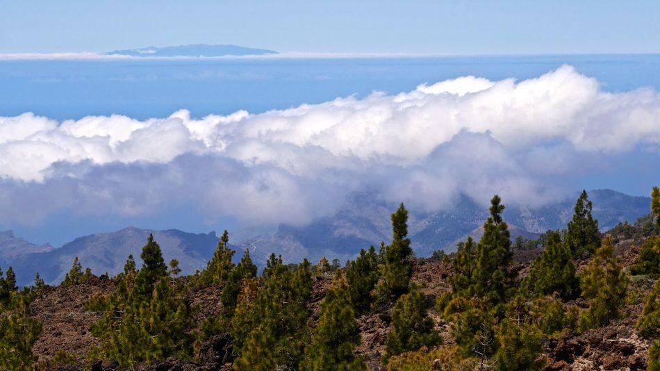 Baumgrenze Beauty In Nature Cloud Cloud - Sky Idyllic La Gomera La Gomera, Canary Islands Landscape Mountain Mountain Range Nature Scenics Showcase April Sky Tenerife Teneriffa Tranquil Scene Tranquility Tree