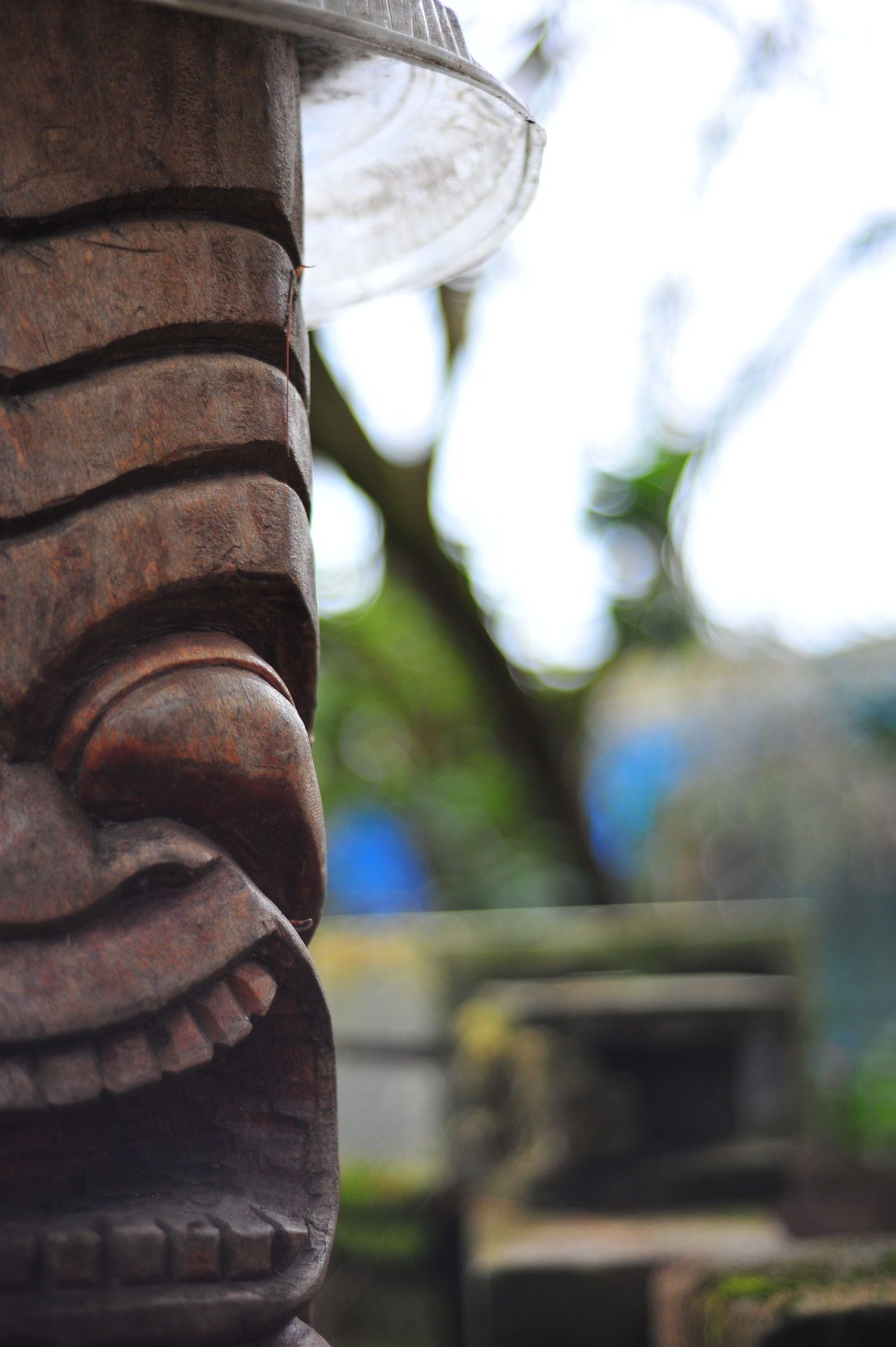 Close-up Day Focus On Foreground Half Face Nature No People Outdoors Tiki God Tire Tree Art Is Everywhere