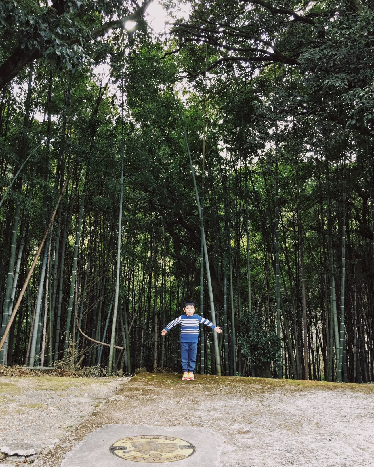 Tree Full Length Forest One Person Rear View Nature Outdoors Leisure Activity Standing Real People Tree Trunk Lifestyles Day Growth Beauty In Nature People Bamboo Grove Holiday Family Child Childhood Long Goodbye The Secret Spaces Art Is Everywhere The Great Outdoors - 2017 EyeEm Awards