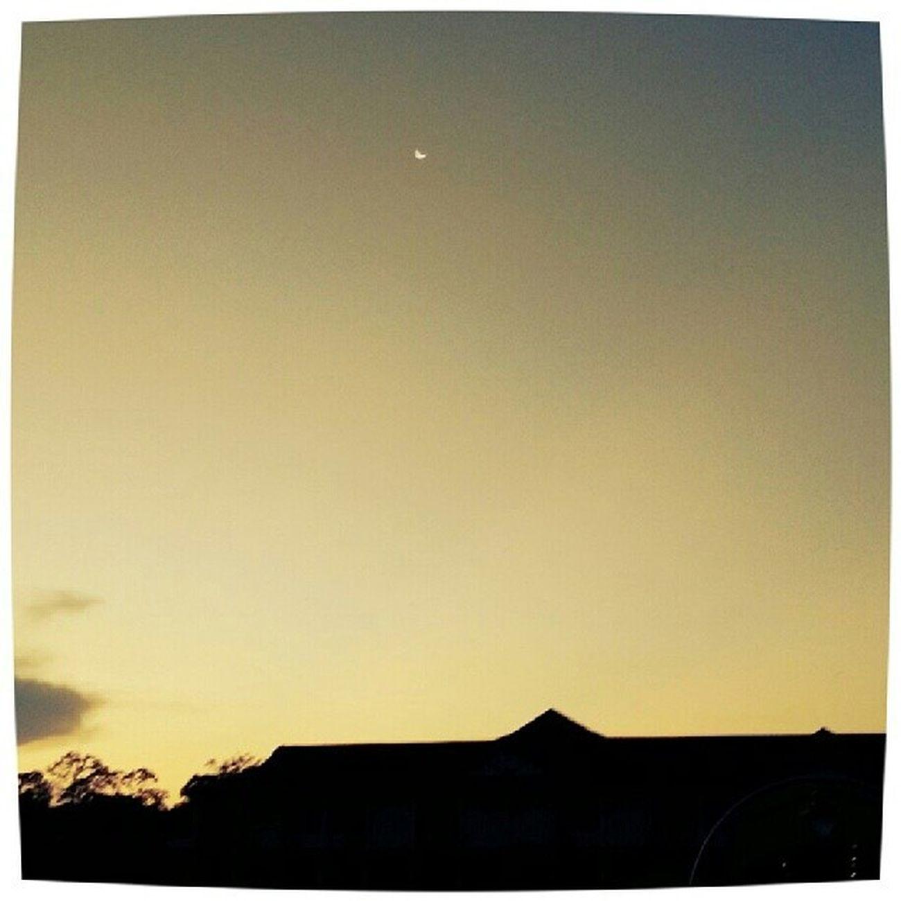 夕阳无限好,只是近黄昏。 Loveisprecious Missing
