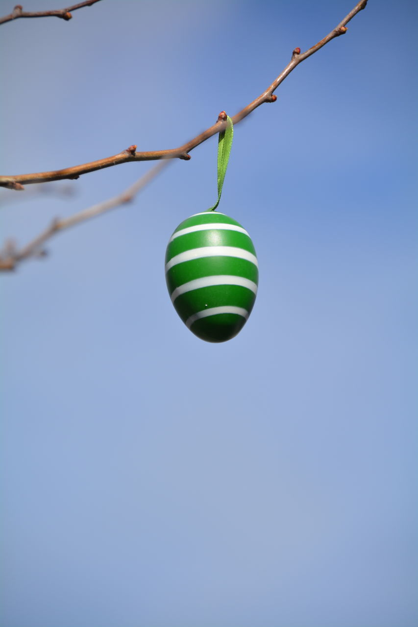 green color, hanging, clear sky, no people, blue, outdoors, day, close-up, nature, sky