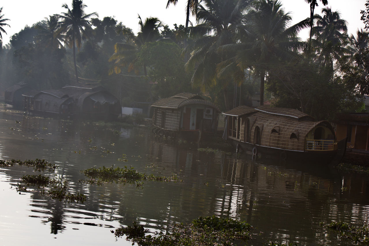 Backwaters Beautiful Beauty Beauty In Nature Boat Coconut Trees Houseboat Kerala Lifestyles Natural Beauty Nature Palm Tree Plant Reflection Scenery Scenics Sky Tranquil Scene Tranquility Tree Water Water Reflections