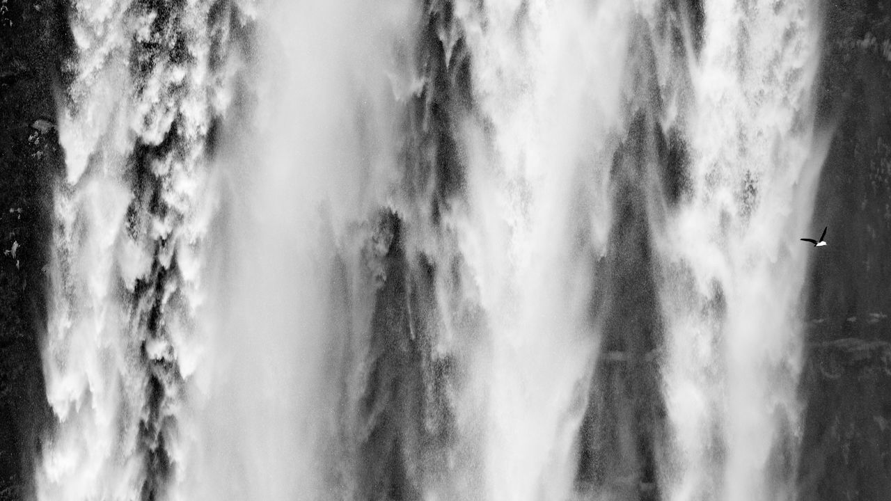 """Waterlines. The Skógafoss is such an impressive waterfall. I wonder how many people notice the birds flying around. (Nikon D810 70-200 mm f/2.8 ƒ/8.0 200mm 1/320"""" iso 100) 16x9 Abstract Balck And White Beauty In Nature Birds Animals White Close Up Day Golden Circle Nature Nature No People Outdoors Power In Nature Skandinavia Skogafoss Travel Water Waterfall Waterfront"""
