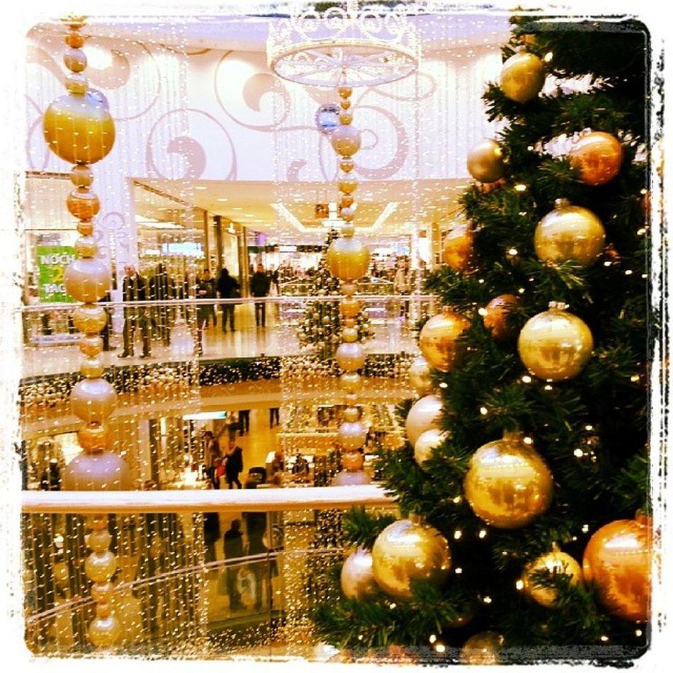 Weihnachtsdekoration in den Schlosshöfe '. Oldenburg Öl