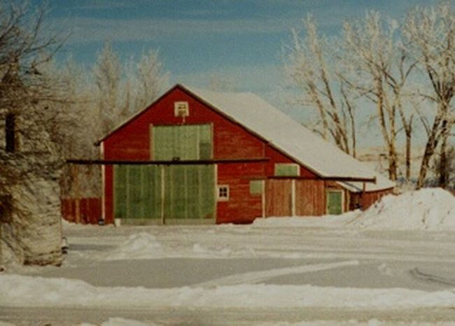 It's Cold Outside Showcase: December Snow ❄ Winter Outdoors Freezing Temperature Photography Family Barn Homestead Winter Wintertime Cold Temperature Freezing Cold Freezingweather Many Memories Winter Blizzards
