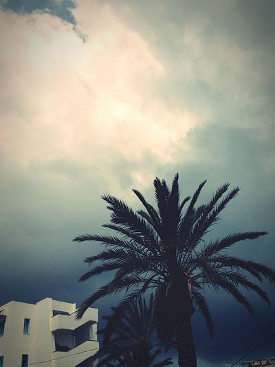 Mahdia , Tunisia First Eyeem Photo