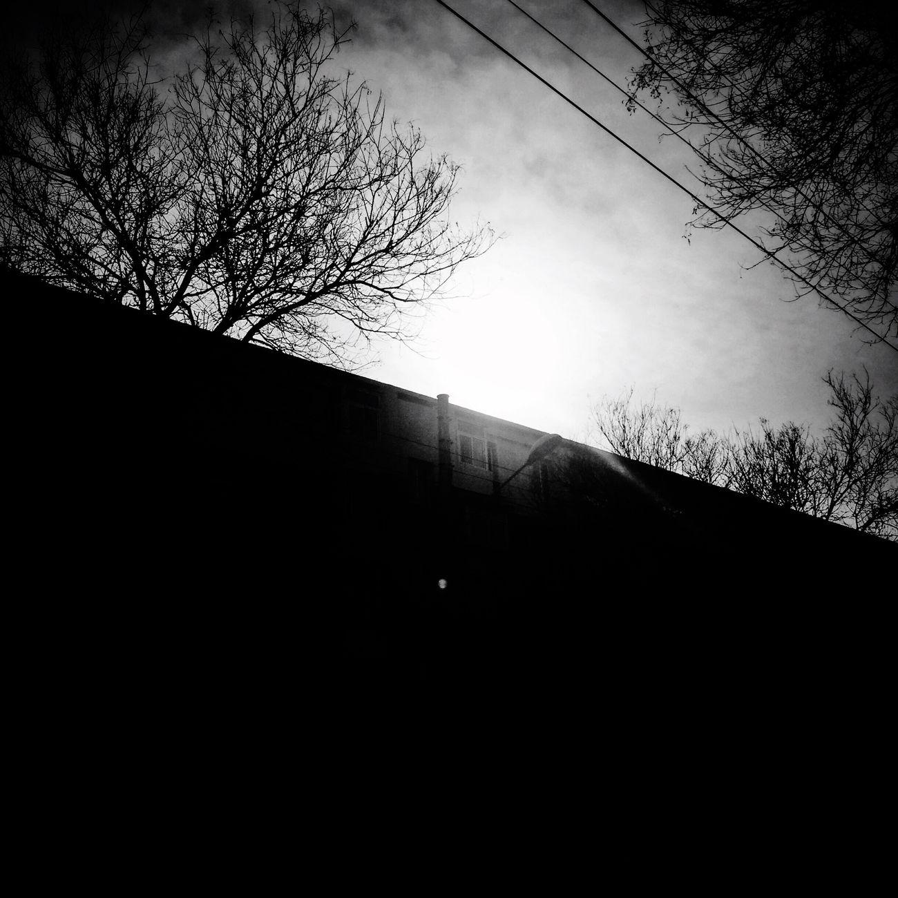 爆竹声中一岁除,尽是硝烟弥漫中。 辞旧迎新 三阳开泰 恭喜发财 红包拿来 Walking Around Spring Happynewyear2015 Project 365 Blackandwhite Black And White