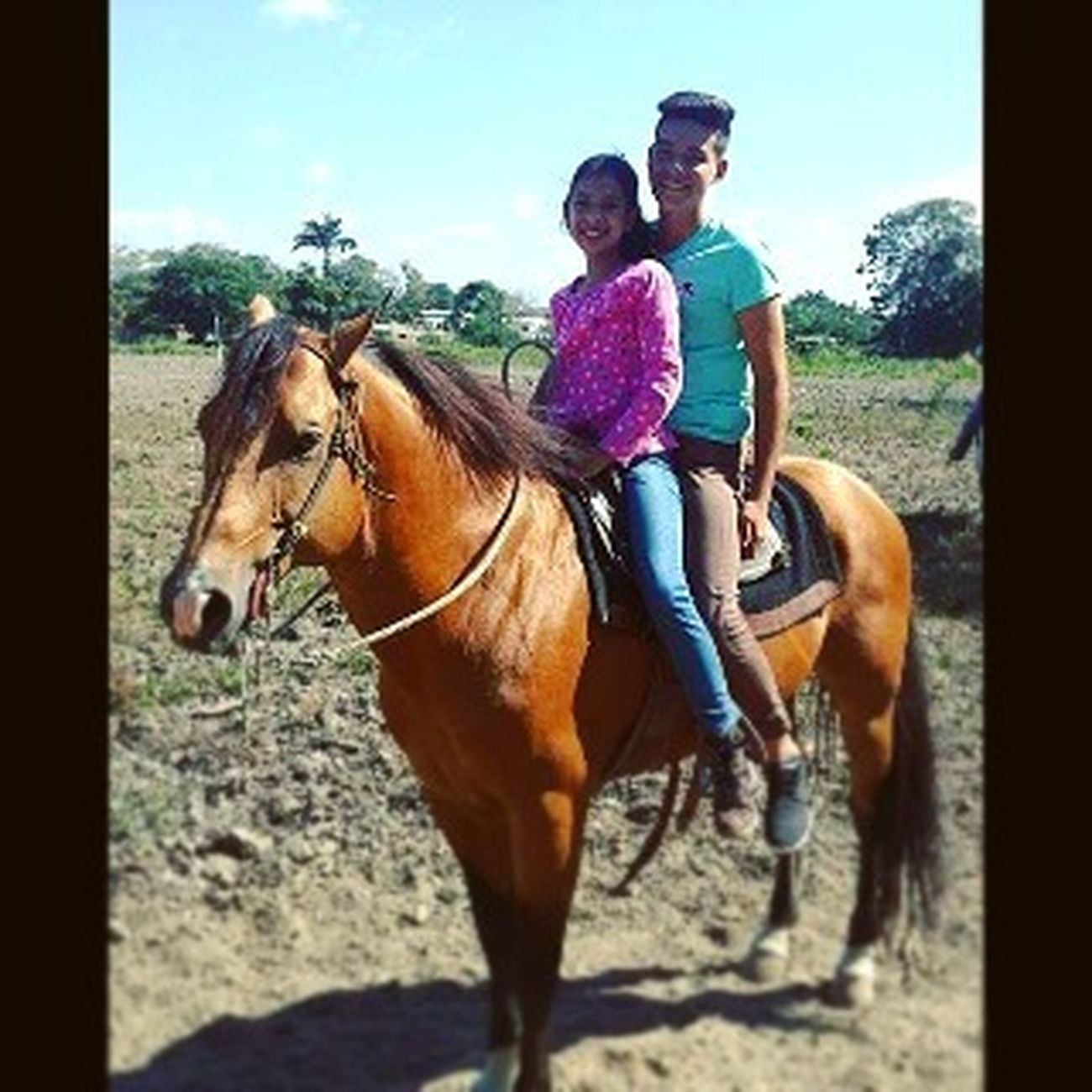 Me⚓ Sister Horse🐴