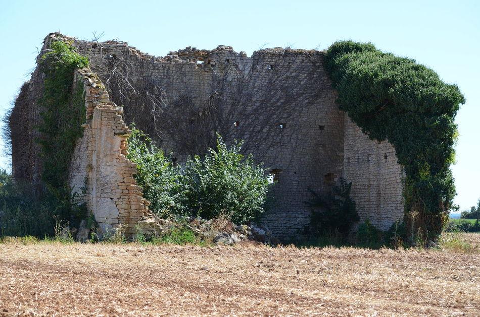 Ces images ont été prises le 7 août 2016 dans le département des Deux-Sèvres en France. House Maison Maison En Ruine Ruine Ruined Ruined House