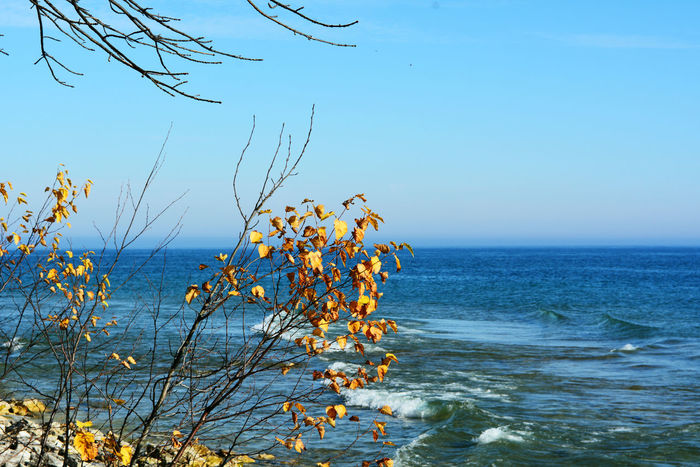 Autumn Beauty In Nature Blue Clear Blue Sky End Of Summer Fall Horizon Over Water Idyllic Lake View Lakeshore Nature Nature No People Non Urban Scene Outdoors Scenics Sea Seascape Sky Tranquil Scene Tranquility Tranquility Trees Water Waves