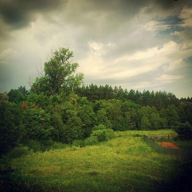Хорошо то как в деревне... Well, how in the village ... Russia Summer Sky Landscape Россия просторы небо Хорошо красиво Green облака облако Clouds Skyscraper Skyporn