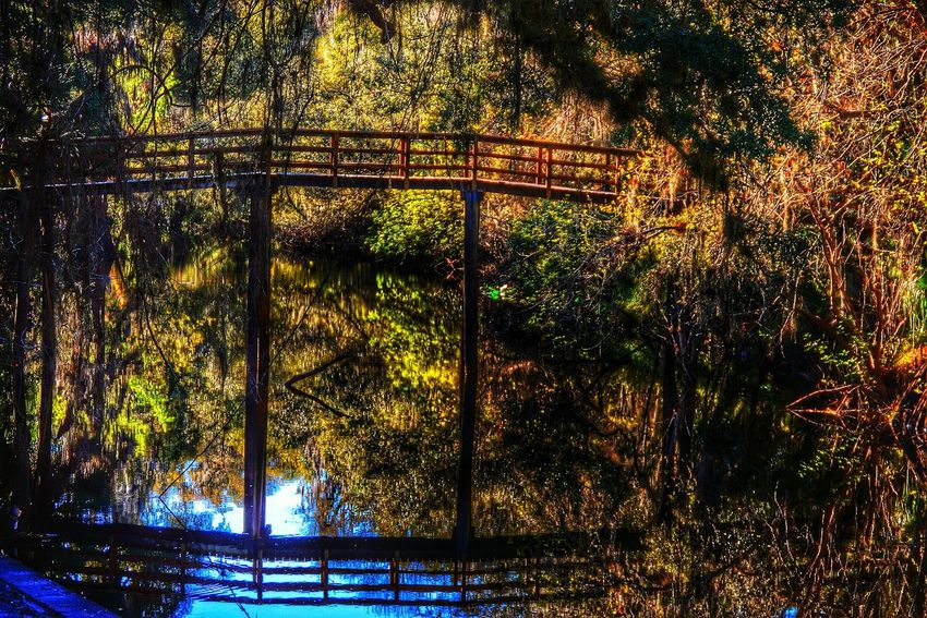 Wood bridge with reflection in the river.. Escaping River Nature Landscape Hiking Water Reflections Getting In Touch Taking Photos Forest