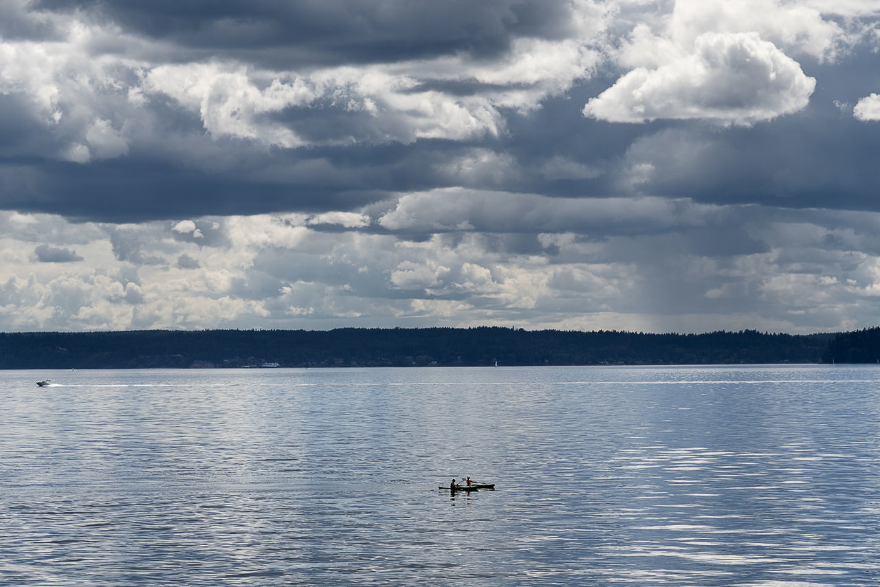 couple kayaking under dramatic cloudy sky Animal Themes Animals In The Wild Beauty In Nature Cloud - Sky Couple Day Humpback Whale Kayaking Nature Nautical Vessel No People One Animal Outdoor Recreation Outdoors Scenics Sea Sky Swimming Tranquility Water Waterfront Whale