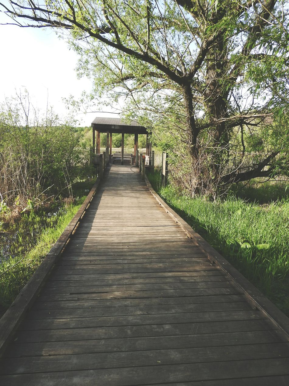 Showcase June Taking Photos Check This Out EyeEm Gallery At The End Of The Path Talking A Walk Path Pathway United States Unitedstates Secret Place Hidden Within Outdoors Beautiful Structure Building Structures Architecture Outdoor Photography On The Path