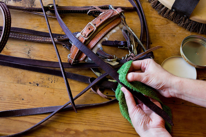 A ranch hand cleaning horse tack Bridle Brush Clean Cleaning Cloth Cropped Holding Horse Horse Tack Horseman Human Finger Indoors  Leisure Activity Lifestyles Part Of Person Rag Ranch Hand Reins Saddle Soap Soap Tack Business Stories