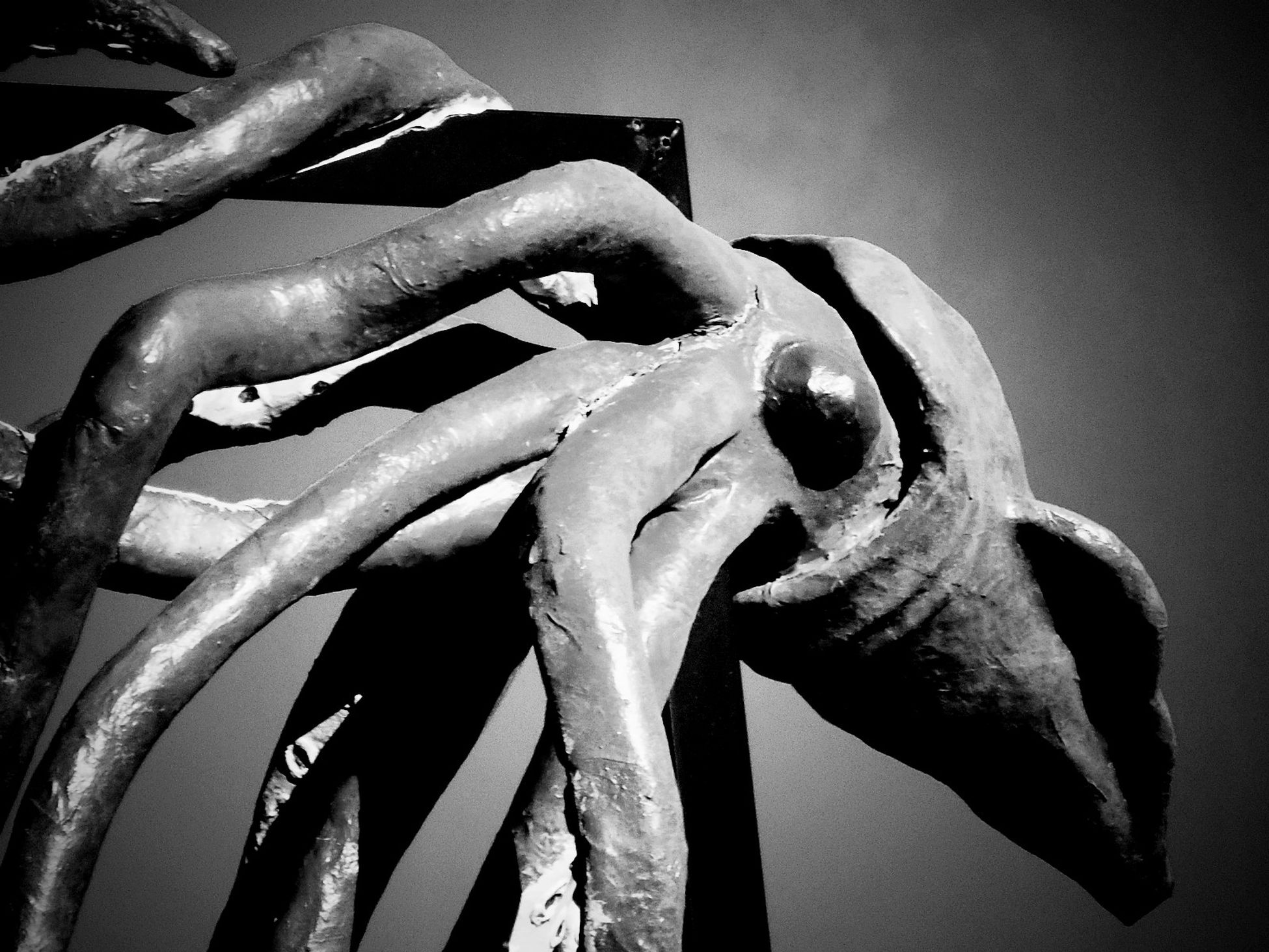 the squid black and white Sculpture