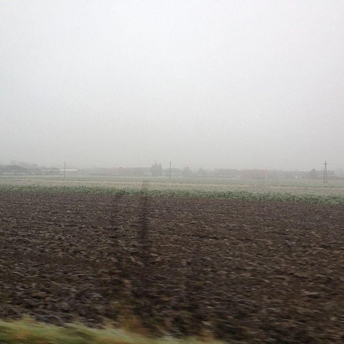 Fog everywhere