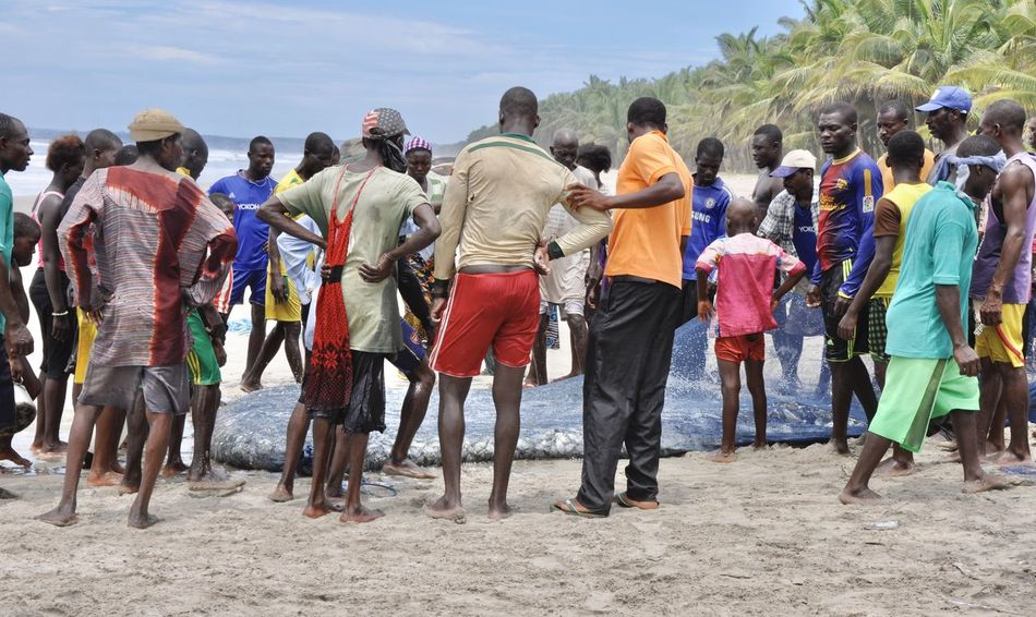 Africa Beach Developing Country Fischernetz Fisherman Fishing Fishing Area Fishing Boat Fishing Net Fishing Quota Fishing Village Ghana Large Group Of People Men Net Outdoors People Pirogue Poverty Wooden Boat Yields Picking
