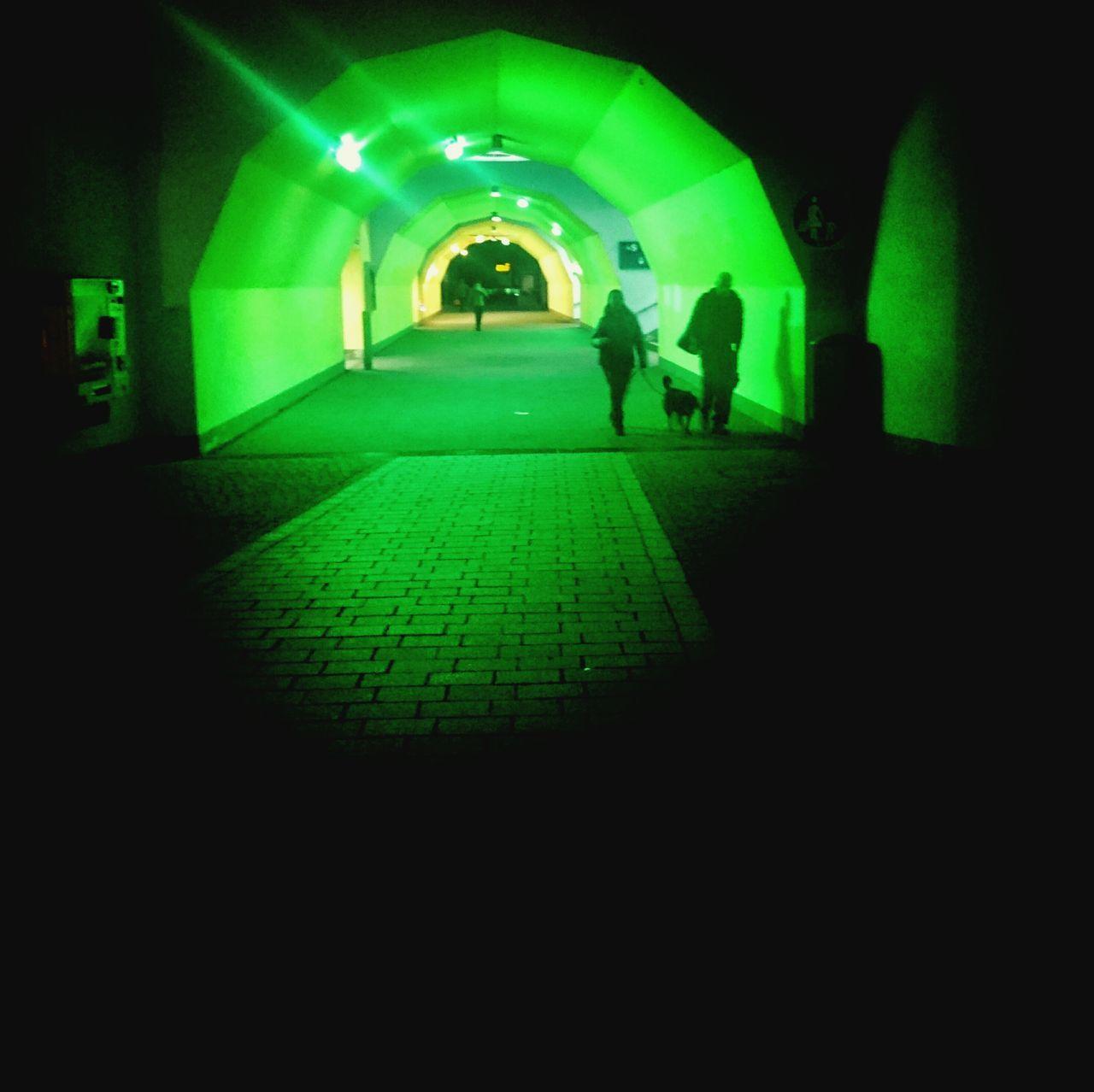 Es grünt so grün, wenn Green Light Grün In Der Stadt grünt. Nightphotography Tunnel AMPt_community Dreaming
