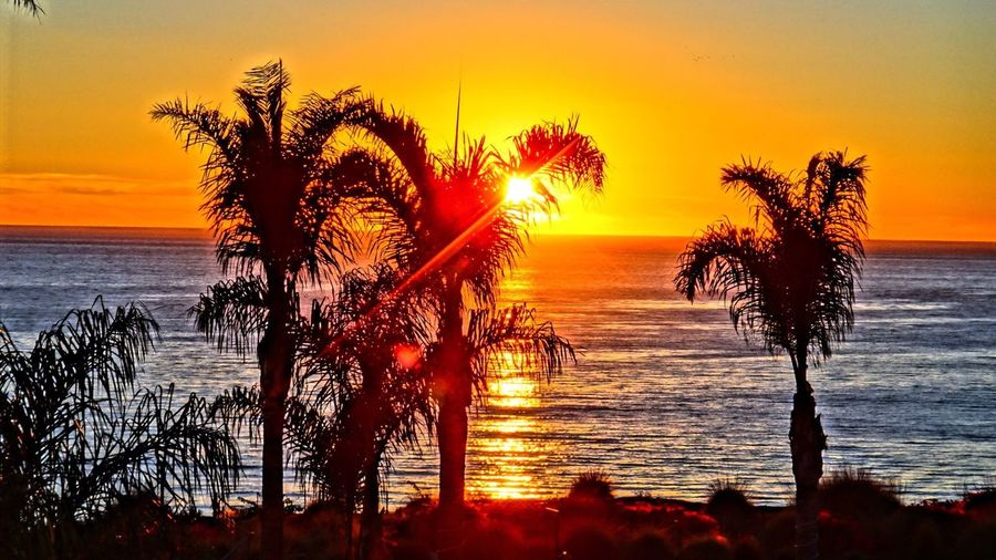 PISMO BEACH CA🇺🇸 Sunset #sun #clouds #skylovers #sky #nature #beautifulinnature #naturalbeauty #photography #landscape EyeEm Sunrise_sunsets_aroundworld Landscape_photography Landscape_Collection Sunset Nature All_shots #Portrait #Vscocamphotos #Likesforlikes #Photographs #Photographylovers #TopLikeTags #Outdoorphotography #Likesreturned #Silhouette #Likeforlike #Art #Contrast #Landscaped #TagStaGram #love #friends #tagstagram #photooftheday #selfie #amazing #f Usa #igersusa #ig_unitedstates #rockin_shotz #just_unitedstates #insta_crew #gf_usa #nature #rsa_rural #instagramhub #allshots_#world_shooters #insta_america #ig_captures #centralfeed #webstagram #ic_landscapes #wonderful_america #storyofamerica #instagra EyeEm Gallery