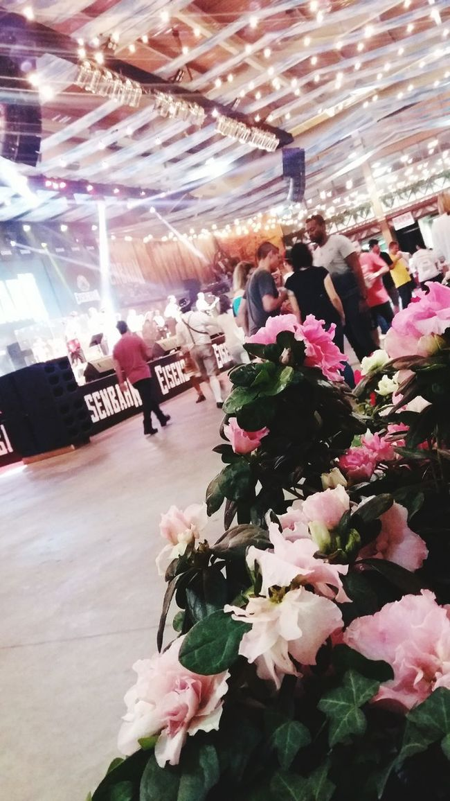 Retail  Indoors  Person Flower Incidental People Freshness Variation Shopping Flower Shop Shop Buying Abundance Choice Merchandise City Life Oktoberfest Oktober 2016 Oktoberschnee Oktoberfest Decoration Oktoberfestbier Contemplation Close-up Remote Outdoors Blossom