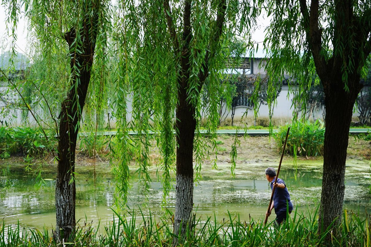 Tree Growth Real People One Person Outdoors Nature Beauty In Nature One Boy Only Standing The Human Condition Historical Place China View Nature Wilderness Green Nature Been There.