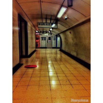 Spooky London Underground! London_only Londonpop Snapspeed Igerslondon London Ig_london LDN Ig_europe Timeoutlondon Lovelondon Londonunderground TransportForLondon London_only_members Londoner Londontown Londonlife Train Tube Track Rsa_theyards Spooky Horror ⃣theyards_candid