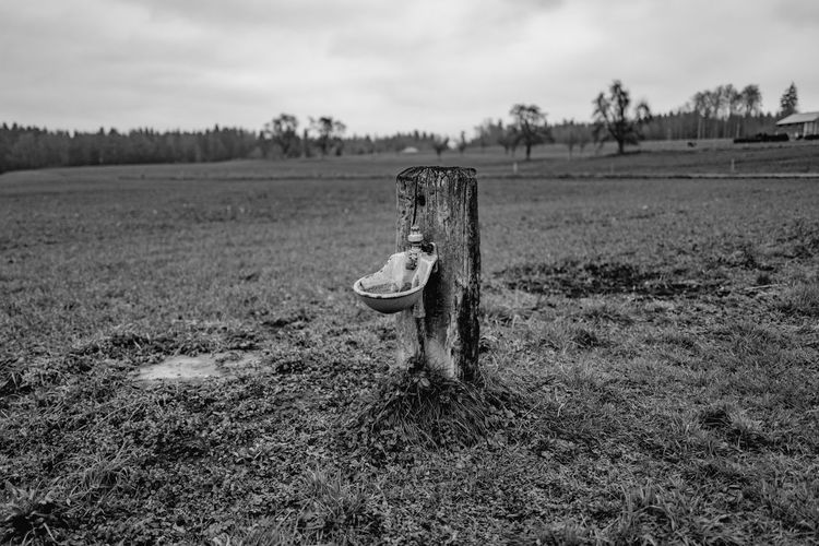 Abandoned Agriculture Damaged Farm Field Grass Landscape Rural Scene